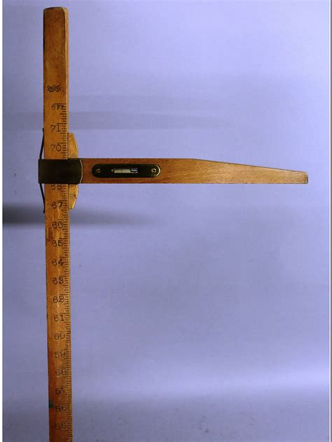 Wooden Horse Measuring Stick