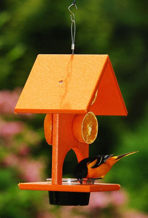 Wooden Oriole Feeder Plans