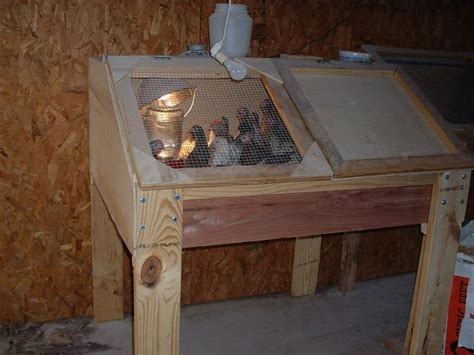 Wooden-Brooder-Box-Plans