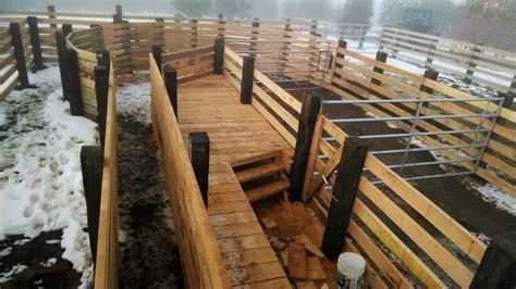 Wooden-Cattle-Chute-Plans