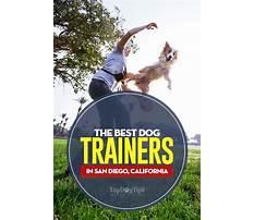 Best Woodland ca dog training.aspx