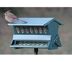 Best Woodlink bird feeder replacement parts