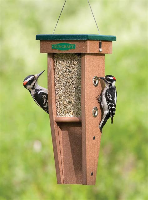 Woodpecker-Bird-Feeder-Plans