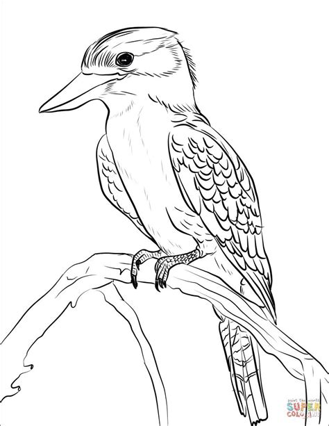 Woodworking Plans Australian Animals Coloring Report