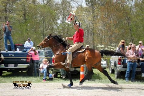 Woodworking Speed Racking Horse For Sale In Tennessee