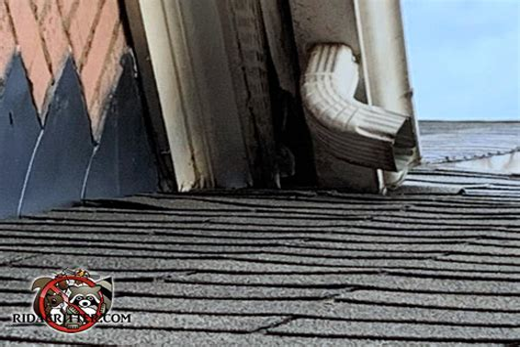 Woodworking-Jobs-Georgia