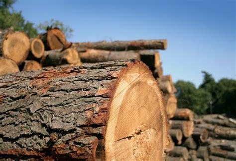 Woodworking-Machinery-British-Columbia