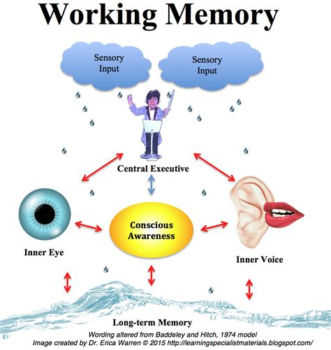 Working Memory Psychology Definition And Aphasia Definition Psychology