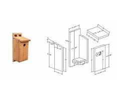 Best Wren birdhouse plans printable