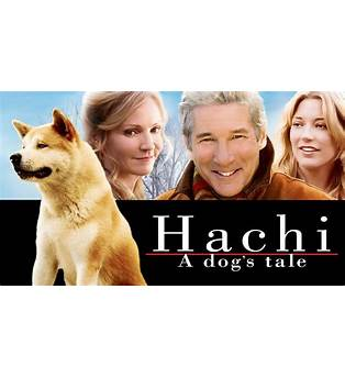A Dog S Purpose Free Movie Online