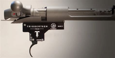 Accumark Trigger Vs Timney Trigger Weatherby Nation