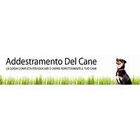 Addestramento del cane corso addestramento cani review