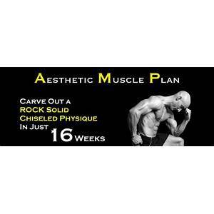 Aesthetic muscle plan amp build rock solid aesthetic muscle with chiseled detail in record time methods