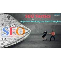 Free tutorial afordable website design and ranking with seo friendly rules