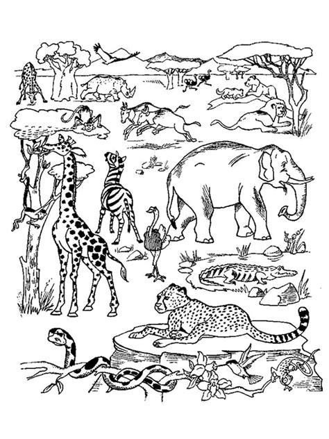 Afrika Tiere Malvorlagen