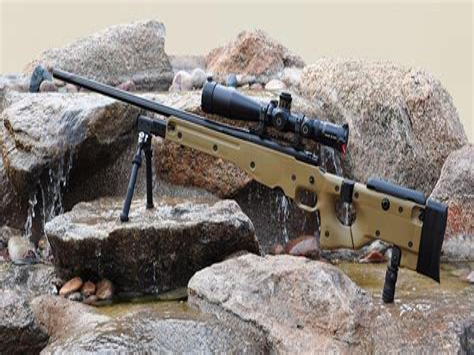 Ai Arctic Remington 700 Chassis