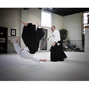 Aikijutsu academy work or scam?