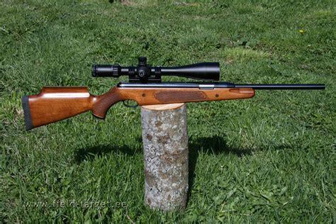 Air Rifle Fpe Down Range