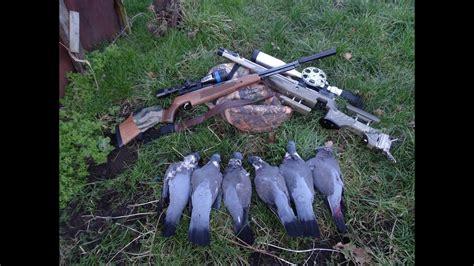 Air Rifle Pigeon Hunting Tips