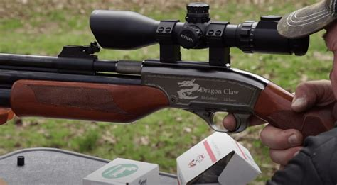 Air Rifle Small Bore That Will Deer