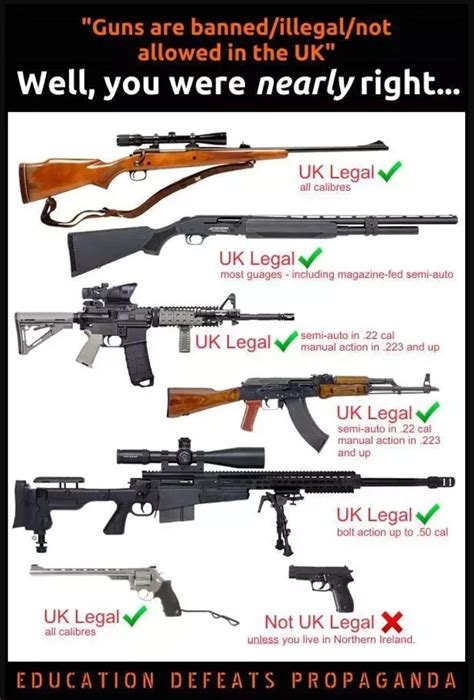 Air Rifles In The Uk Law