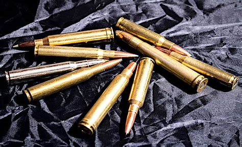 All Around Hunting Rifle