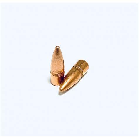 Ammo Seek 223 Projectiles