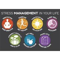 Anxiety free program promo code
