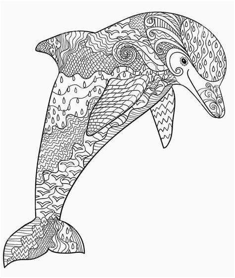 Ausmalbild Delfin Erwachsene