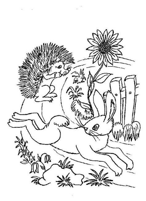 Ausmalbild Der Hase Und Der Igel