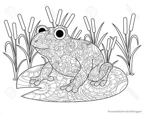 Ausmalbild Frosch Mandala