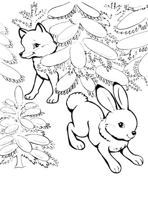 Ausmalbild Hase Und Fuchs