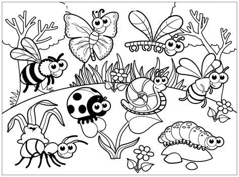 Ausmalbild Insekten Kostenlos