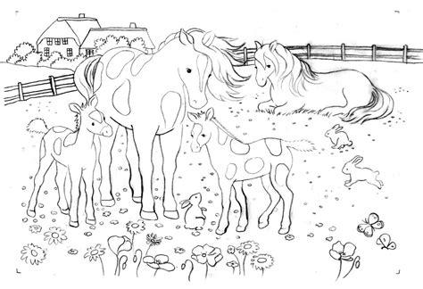 Ausmalbild Pferde Wiese