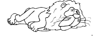 Ausmalbild Schlafender Löwe