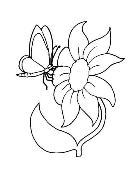 Ausmalbild Schmetterling Mit Blume