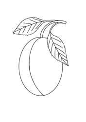 Ausmalbilder Apfel Birne Pflaume
