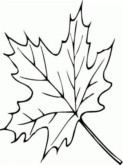 Ausmalbilder Blätter Pdf