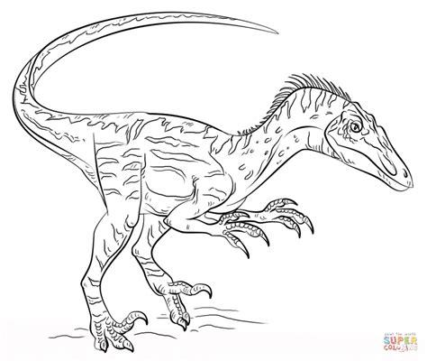 Ausmalbilder Dinosaurier Velociraptor