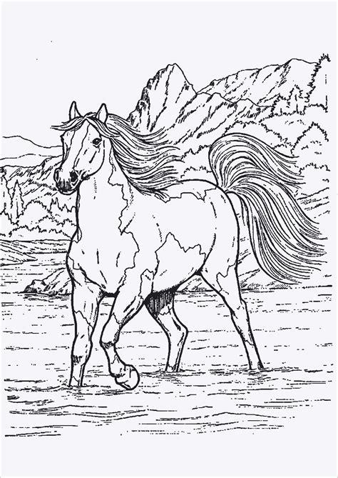 Ausmalbilder Drucken Pferde