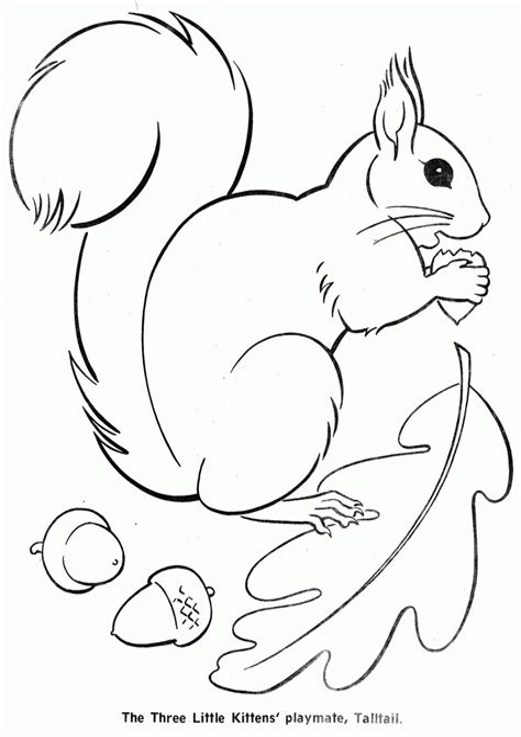 Ausmalbilder Eichhörnchen Familie