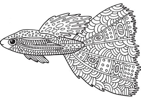 Ausmalbilder Für Erwachsene Fische