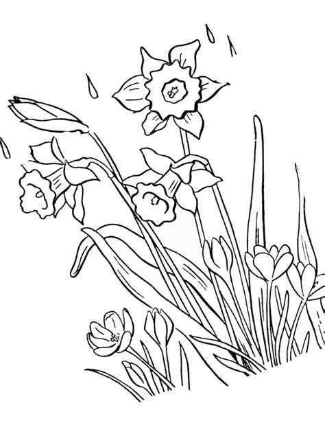 Ausmalbilder Frühling Kinder