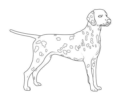 Ausmalbilder Hunde Dalmatiner