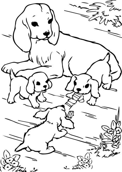 Ausmalbilder Hunde Und Welpen