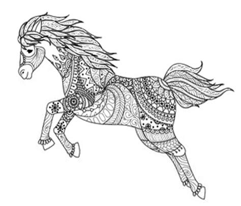 Ausmalbilder Info Pferde