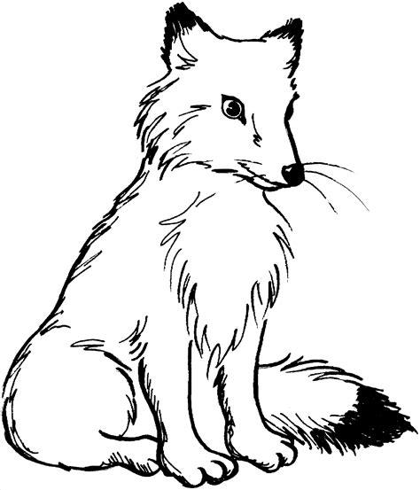 Ausmalbilder Kostenlos Ausdrucken Fuchs
