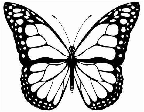 Ausmalbilder Kostenlos Ausdrucken Schmetterling