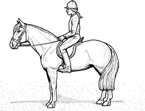 Ausmalbilder Pferde Haflinger