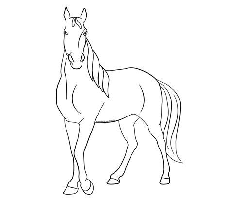 Ausmalbilder Pferde Herde